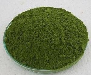 BIO Gerstengras-Pulver in Rohkostgualität 1kg