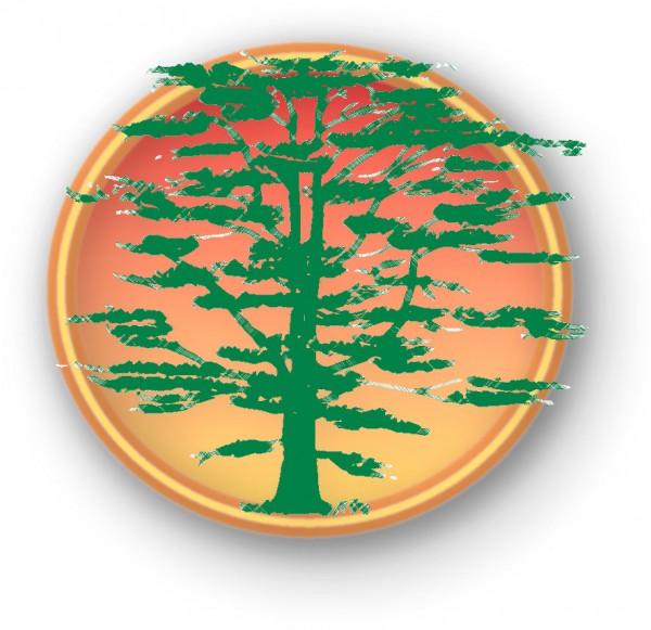 Logo_gruen_ohne_text
